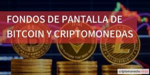 Fondos de pantalla de bitcoin