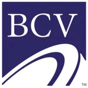 Logo BitCapitalVendor
