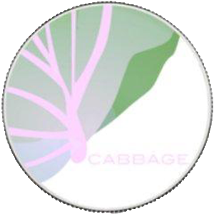 Precio CabbageUnit