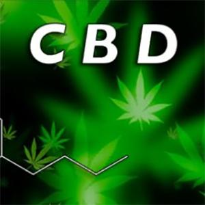 Precio CBD Crystals