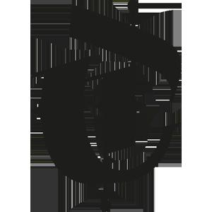 Logo CyberTrust