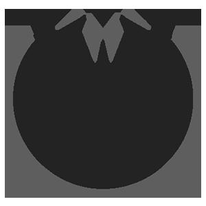 Logo Dark Lisk