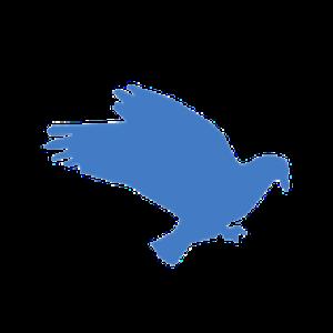 Logo DMM: Governance