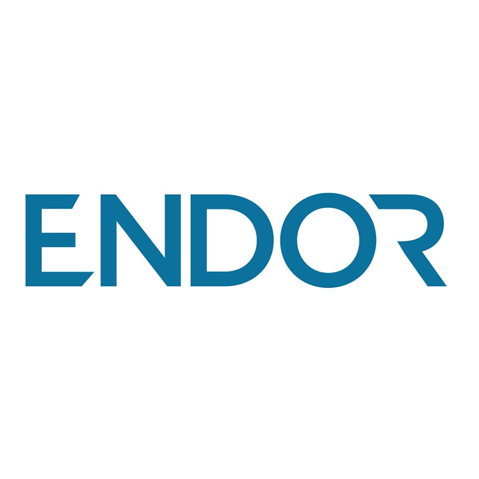 Logo Endor Protocol Token