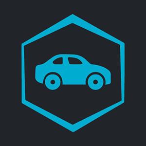 Logo TrustedCars FLEX