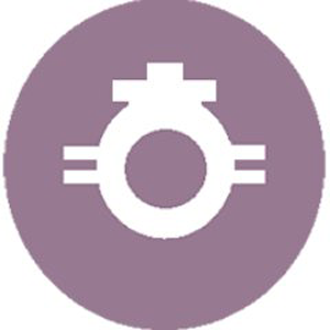 Logo Hellenic Coin
