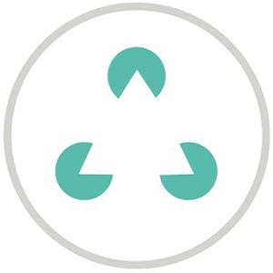 Logo IOV