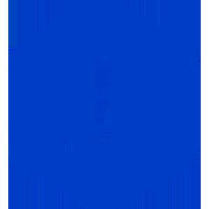 Logo Jibrel Network Token