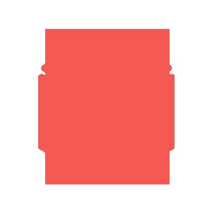 Logo Lunyr