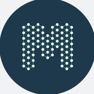 Logo BlockMesh
