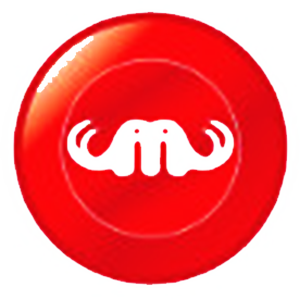 Logo MemoryCoin