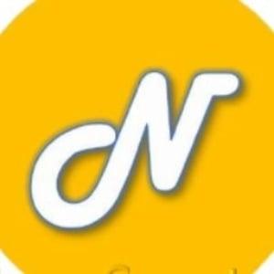 Precio Newton Coin