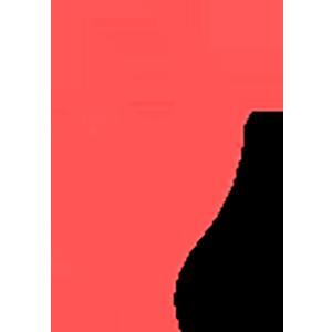 Logo SparksPay