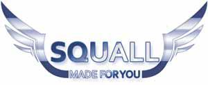 Precio Squall Coin