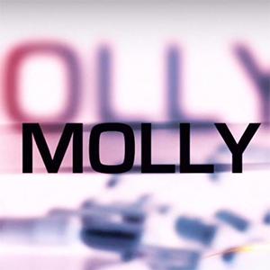 Precio MollyCoin