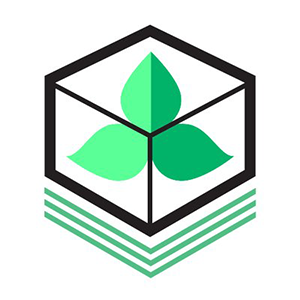 Logo Tokes