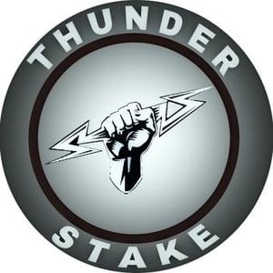 Precio ThunderStake
