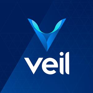 Logo VEIL