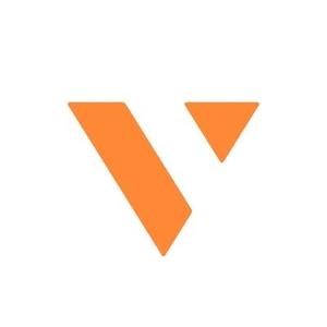 Logo V Systems