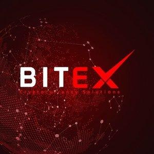 Logo BiteX