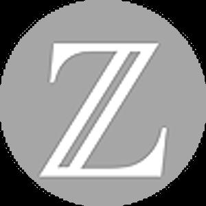 Logo BitZeny